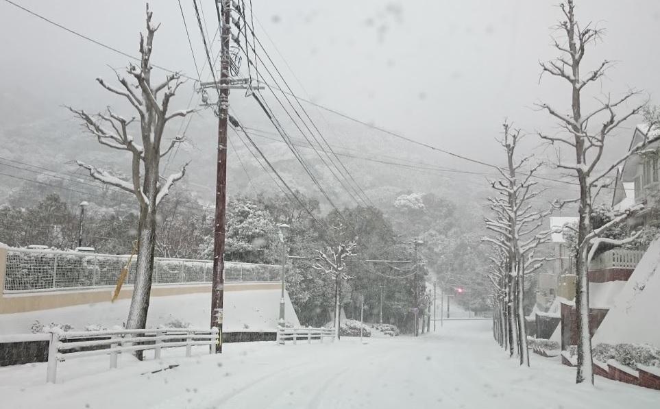 20160124大雪記録更新
